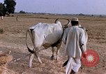 Image of Indian village India, 1956, second 27 stock footage video 65675043053