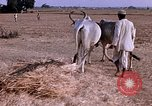 Image of Indian village India, 1956, second 30 stock footage video 65675043053