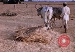 Image of Indian village India, 1956, second 31 stock footage video 65675043053