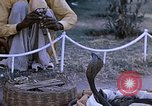 Image of Snake charmer India, 1956, second 8 stock footage video 65675043054