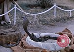 Image of Snake charmer India, 1956, second 17 stock footage video 65675043054