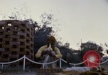 Image of Snake charmer India, 1956, second 30 stock footage video 65675043054