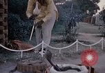 Image of Snake charmer India, 1956, second 41 stock footage video 65675043054