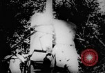 Image of Viet Cong soldiers Vietnam, 1967, second 17 stock footage video 65675043130