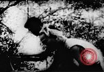 Image of Viet Cong soldiers Vietnam, 1967, second 39 stock footage video 65675043130