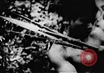 Image of Viet Cong soldiers Vietnam, 1967, second 56 stock footage video 65675043130