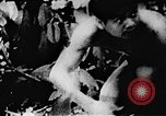 Image of Viet Cong soldiers Vietnam, 1967, second 62 stock footage video 65675043130
