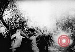 Image of Viet Cong soldiers Vietnam, 1967, second 13 stock footage video 65675043132