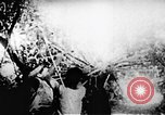 Image of Viet Cong soldiers Vietnam, 1967, second 14 stock footage video 65675043132