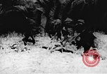 Image of Viet Cong soldiers Vietnam, 1967, second 17 stock footage video 65675043140
