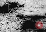 Image of Viet Cong soldiers Vietnam, 1967, second 22 stock footage video 65675043140