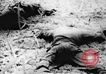 Image of Viet Cong soldiers Vietnam, 1967, second 23 stock footage video 65675043140