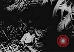 Image of Viet Cong soldiers Vietnam, 1967, second 10 stock footage video 65675043144