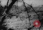 Image of Viet Cong soldiers Vietnam, 1967, second 13 stock footage video 65675043144