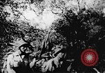 Image of Viet Cong soldiers Vietnam, 1967, second 40 stock footage video 65675043144