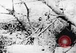 Image of Viet Cong soldiers Vietnam, 1967, second 26 stock footage video 65675043147