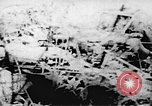 Image of Viet Cong soldiers Vietnam, 1967, second 32 stock footage video 65675043147