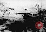 Image of Viet Cong soldiers Vietnam, 1967, second 36 stock footage video 65675043147