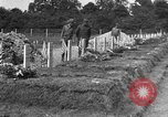 Image of Aircraft assembly factory France, 1918, second 9 stock footage video 65675043241