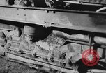 Image of Mechanical plow Churt England United Kingdom, 1938, second 11 stock footage video 65675043244