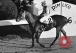 Image of Seabiscuit Maryland United States USA, 1938, second 16 stock footage video 65675043249