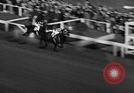 Image of Seabiscuit Maryland United States USA, 1938, second 34 stock footage video 65675043249