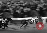Image of Seabiscuit Maryland United States USA, 1938, second 38 stock footage video 65675043249