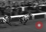 Image of Seabiscuit Maryland United States USA, 1938, second 39 stock footage video 65675043249