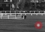 Image of Seabiscuit Maryland United States USA, 1938, second 48 stock footage video 65675043249