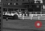 Image of Seabiscuit Maryland United States USA, 1938, second 49 stock footage video 65675043249
