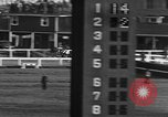 Image of Seabiscuit Maryland United States USA, 1938, second 50 stock footage video 65675043249
