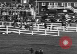 Image of Seabiscuit Maryland United States USA, 1938, second 58 stock footage video 65675043249