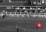 Image of Seabiscuit Maryland United States USA, 1938, second 60 stock footage video 65675043249