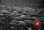 Image of Unrest in Tokyo over the Treaty of San Francisco Tokyo Japan, 1952, second 4 stock footage video 65675043254