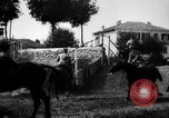Image of Cavalry officers Pinerolo Italy, 1929, second 29 stock footage video 65675043266