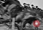 Image of Royal Mounted Carabineers Italy, 1929, second 44 stock footage video 65675043273