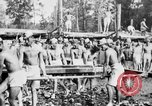 Image of Corpo Celere Italy, 1929, second 14 stock footage video 65675043278