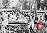 Image of Corpo Celere Italy, 1929, second 15 stock footage video 65675043278