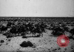 Image of African troops in Italian colony Italy, 1929, second 14 stock footage video 65675043282