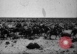Image of African troops in Italian colony Italy, 1929, second 15 stock footage video 65675043282