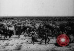 Image of African troops in Italian colony Italy, 1929, second 20 stock footage video 65675043282