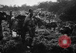 Image of African troops in Italian colony Italy, 1929, second 30 stock footage video 65675043282