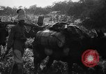 Image of African troops in Italian colony Italy, 1929, second 36 stock footage video 65675043282