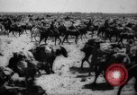 Image of African troops in Italian colony Italy, 1929, second 45 stock footage video 65675043282