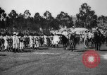 Image of Prince of Piedmont Italy, 1929, second 41 stock footage video 65675043283