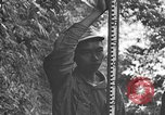 Image of Chinese engineers build Ledo road Burma, 1944, second 21 stock footage video 65675043289