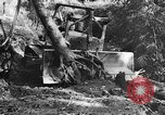 Image of Chinese engineers build Ledo road Burma, 1944, second 59 stock footage video 65675043289