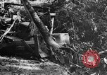 Image of Chinese engineers build Ledo road Burma, 1944, second 61 stock footage video 65675043289