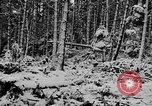 Image of Western Front snow scenes January 1945 in World War II Europe, 1945, second 10 stock footage video 65675043290