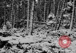 Image of Western Front snow scenes January 1945 in World War II Europe, 1945, second 12 stock footage video 65675043290